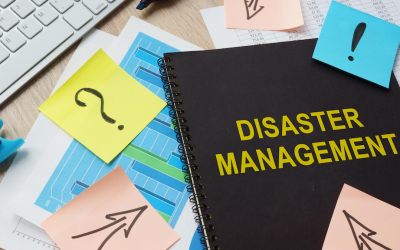 8 steps to make disasters everybody's business (part 2)