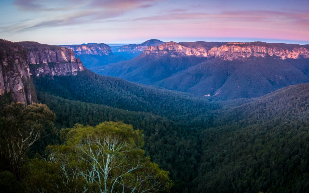 How we are empowering Blue Mountains businesses to increase resilience and wellbeing
